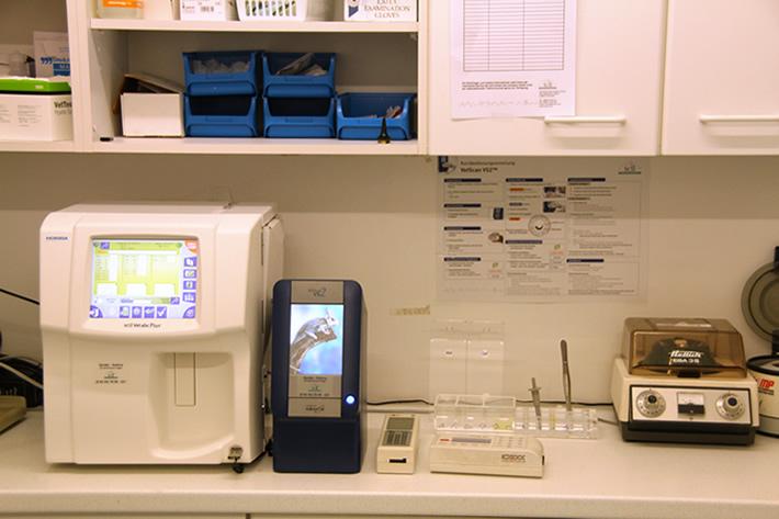 Hauseigenes Labor in der Tierarzt Praxis in Harsefeld - www.kleintierzentrum-harsefeld.de