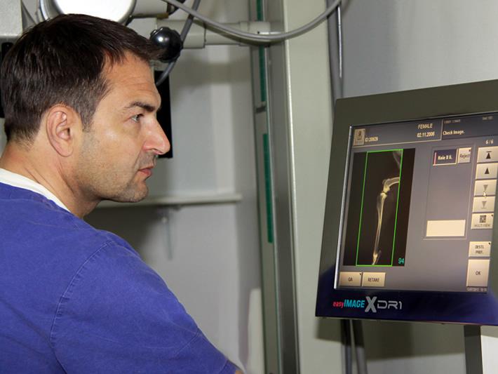Spezialist für Chirurgie und Orthopädie, Neurochirurgie - Tierarzt Dr. Martin Wenzel - www.kleintierzentrum-harsefeld.de