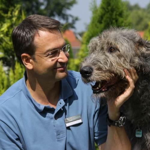 Tierarzt Dr. Martin Wenzel